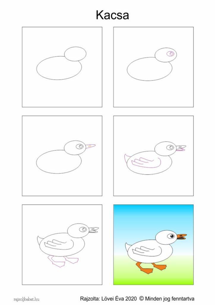Egyszerű kacsa rajz lépésről lépésre
