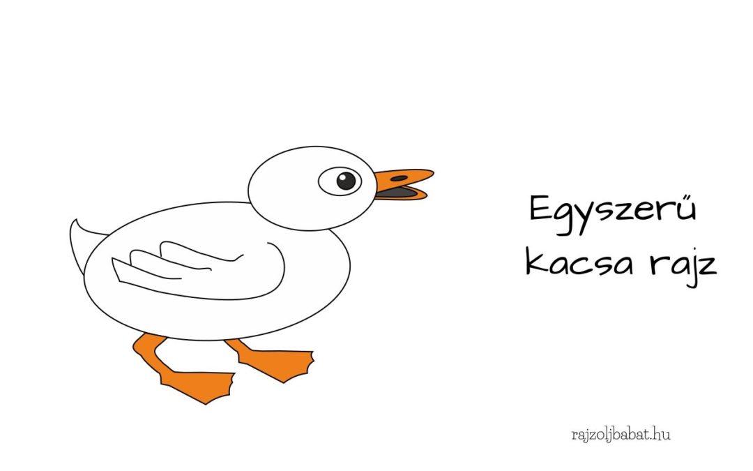 egyszerű kacsa rajz