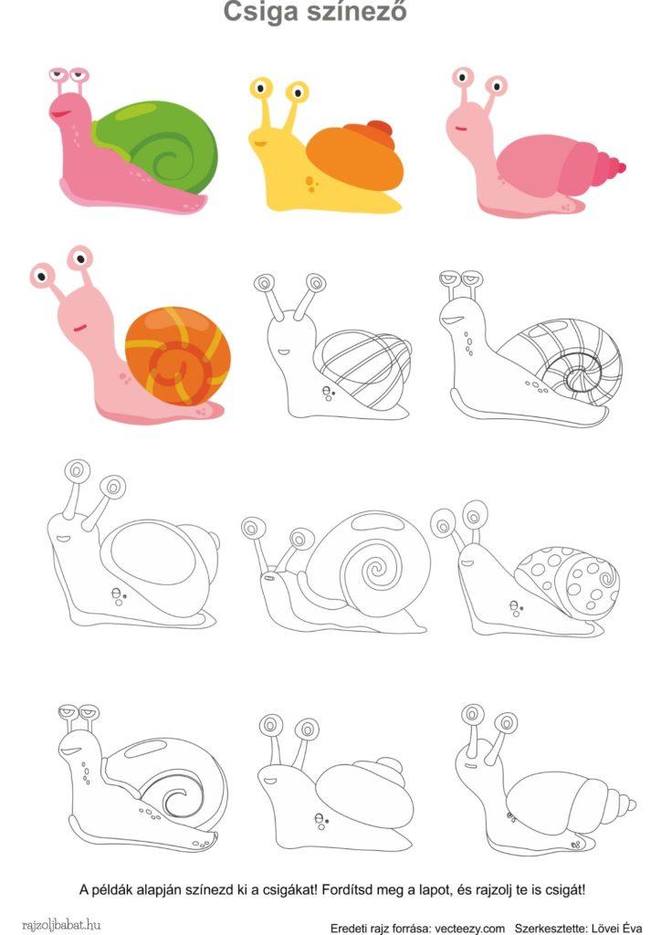 Egyszerű rajzminták csiga színező